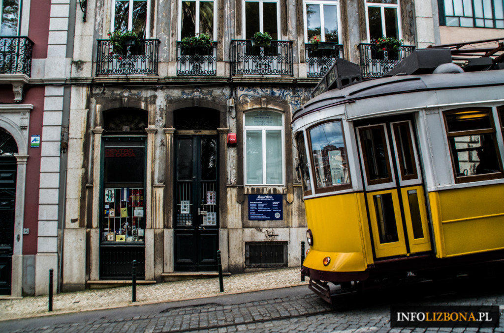 Walentynki Zakochani Lizbona Lisbona Święto Zakochanych Portugalia Zdjęcia