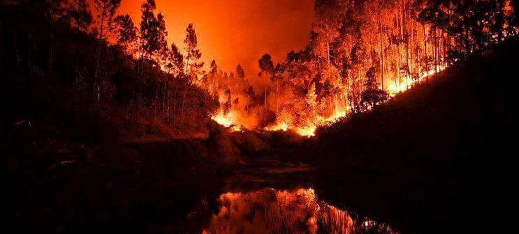 Pożary w Portugalii aktualna sytuacja pozary Portugalia opis gdzie kiedy zagrożenie pożarowe