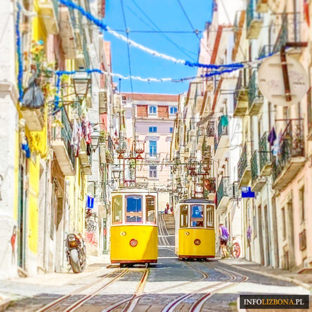 Lizbona Windy Kolejki w Lizbonie Winda Elevador Elevador Bica Santa Justa Lavra Gloria Bilety Informacje Lokalizacja Ceny Rozkład Jazdy jak znaleźć Opis Historia Polski przewodnik po Portugalii