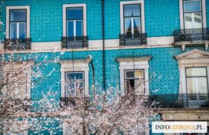 Lizbona Portugalia Porto Polski Przewodnik Lokalny po polsku kontakt biznesowy zwiedzanie co zobaczyć atrakcje i zabytki