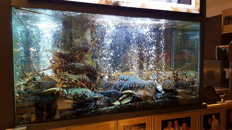 Polecane restauracje w Lizboni Lisbonie Lisboa owoce morza i ryby najlepsze restauracje see food mariscos restauracje z rybami i owocami morza 2