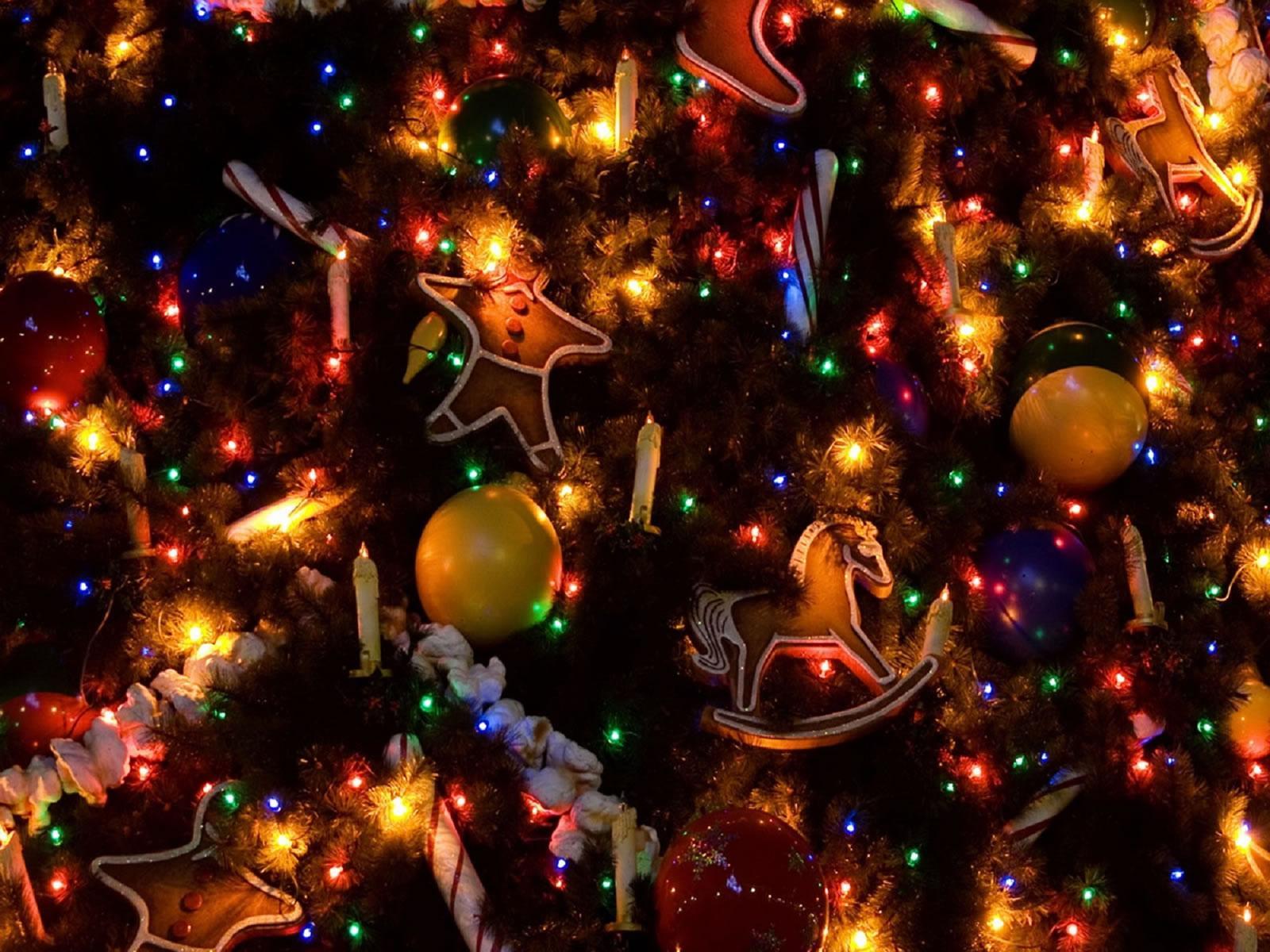 Boze Narodzenie Portugalia Wigilia Swieta Foto