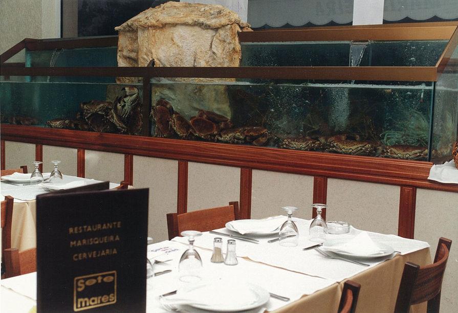 Owoce morza Lizbona polecane restauracje