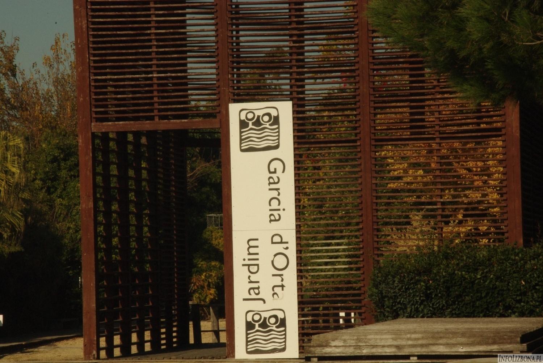 Ogrody Lizbona Park Narodów Oriente Expo Foto Zdjęcia Przewodnik