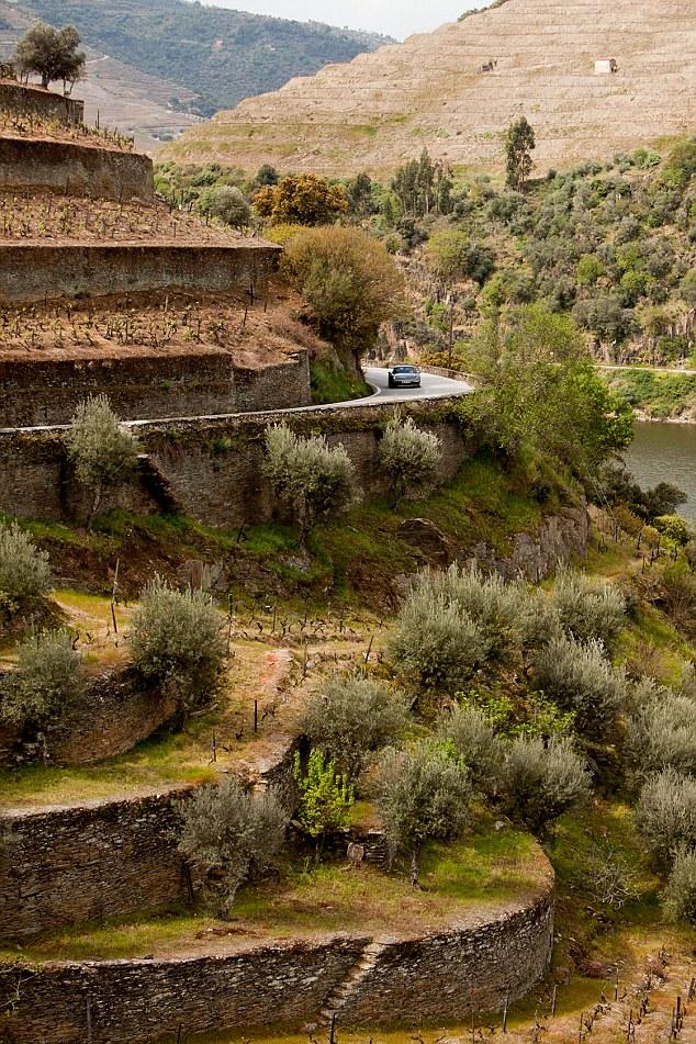 N-222 Droga Portugalia Dolina rzeki Douro Północ Portugalii 2015