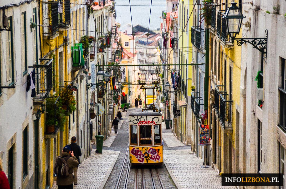 Apartamenty w Lizbonie Avenida Liberdade Lisbona do wynajęcia mieszkania zdjęcia fotografie