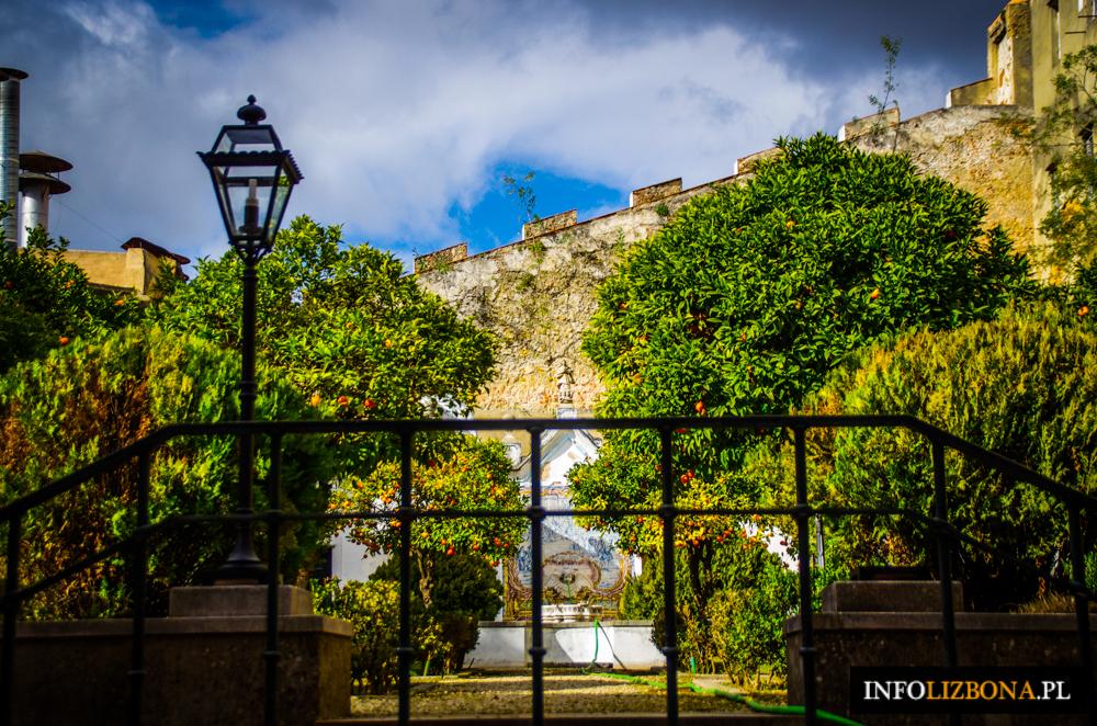 Lato w Lizbonie Lizbona zwiedzanie pomysły na zwiedzanie miasta latem wakacje