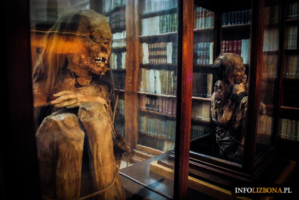 Muzeum Archeologiczne Carmo w Lizbonie Przewodnik Zwiedzanie Atrakcje Turystyczne Muzea Lizbona Foto Fotografie Zdjęcia 4