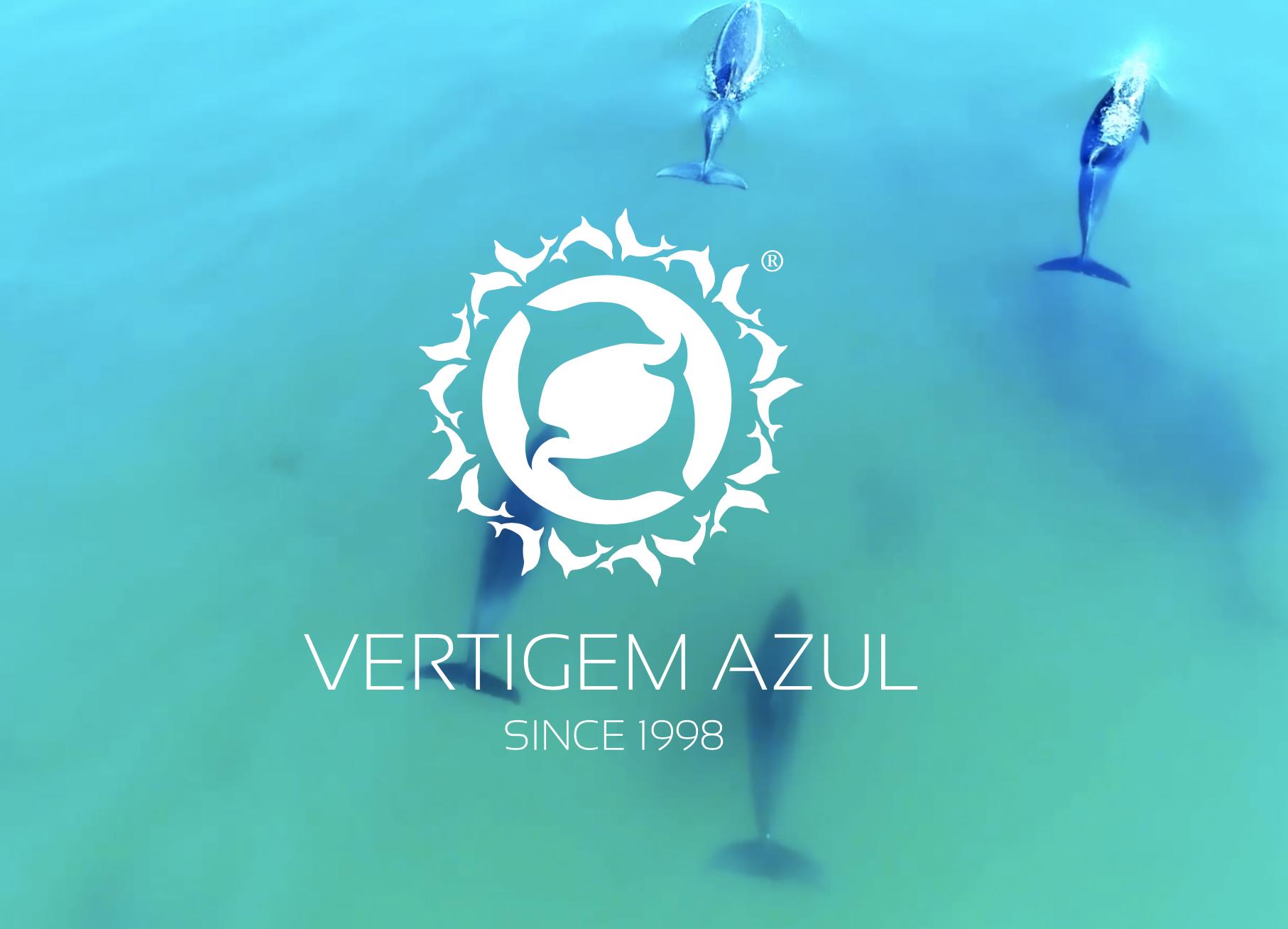 Delfiny w Lizbonie Wycieczki Rejsy Oglądanie Pokazy Delfinarium Delfin Lizbona Algarve Nazare Cena Polski Przewodnik po Lizbonie Portugalia Możliwości Gdzie Oglądać