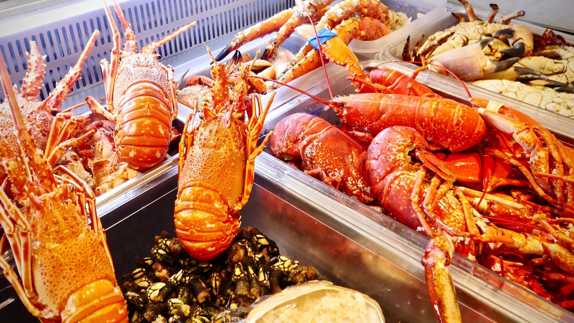 013 Mar do Inferno Cascais Restauracje Polecane Lokalne Gdzie Zjeść w Cascais Portugalia Lizbona Restauracje