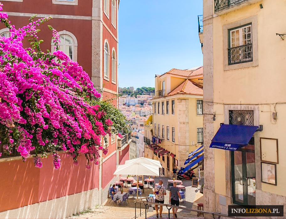 Portugalia Koronawirusa Aktualne Doniesienia Sytuacja Opis Podróże Restrykcje Obostrzenia Regulacje Prawo Nakazy Zakazy 2020 Wrzesień Stan Alarmowy Podróżowanie Rady dla Podróżnych